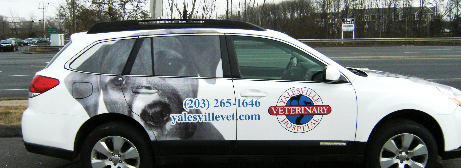 Permalink to: Vehicle Graphics
